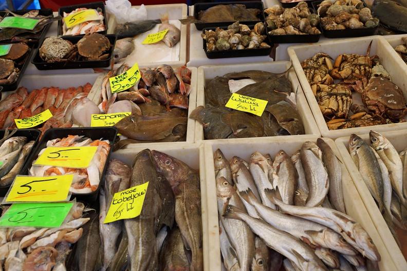 Fischstand auf dem Rotterdamer Markt.jpg