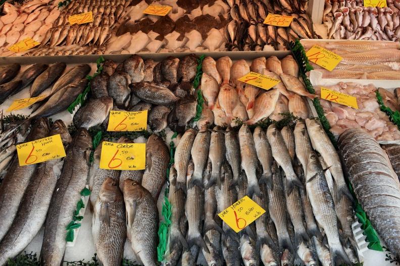 Teil eines Fischstandes auf dem Haagse Markt.jpg